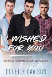 I Wished For You Book