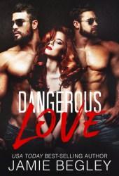 Dangerous Love Book