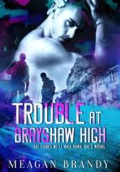 Trouble at Brayshaw High (Brayshaw, #2) Book by Meagan Brandy