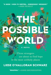 The Possible World