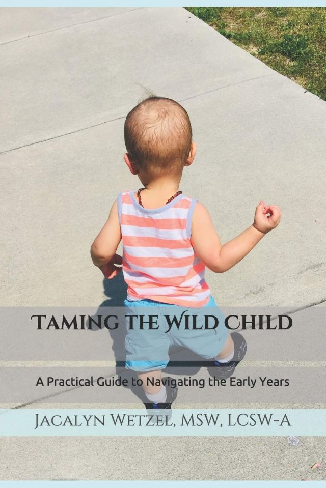 Taming the Wild Child: A Practical Guide to Navigating the Early Years