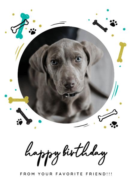 Dogs Birthday Cards Free Greetings Island