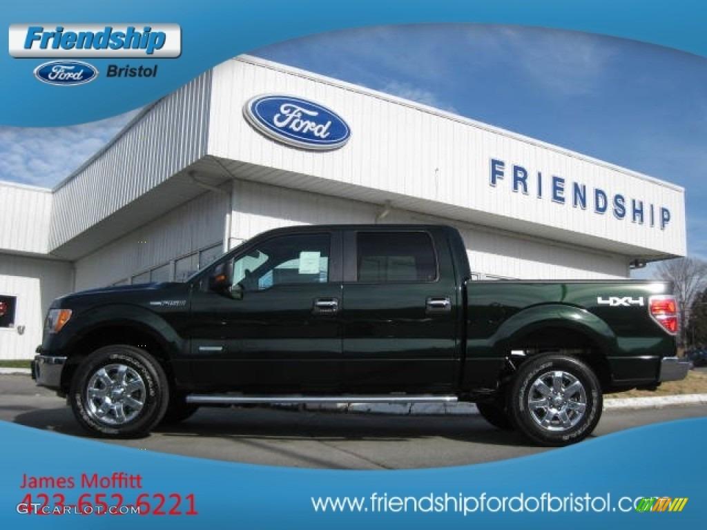 2013 ford f150 xlt supercrew 4x4 green gem metallic color steel