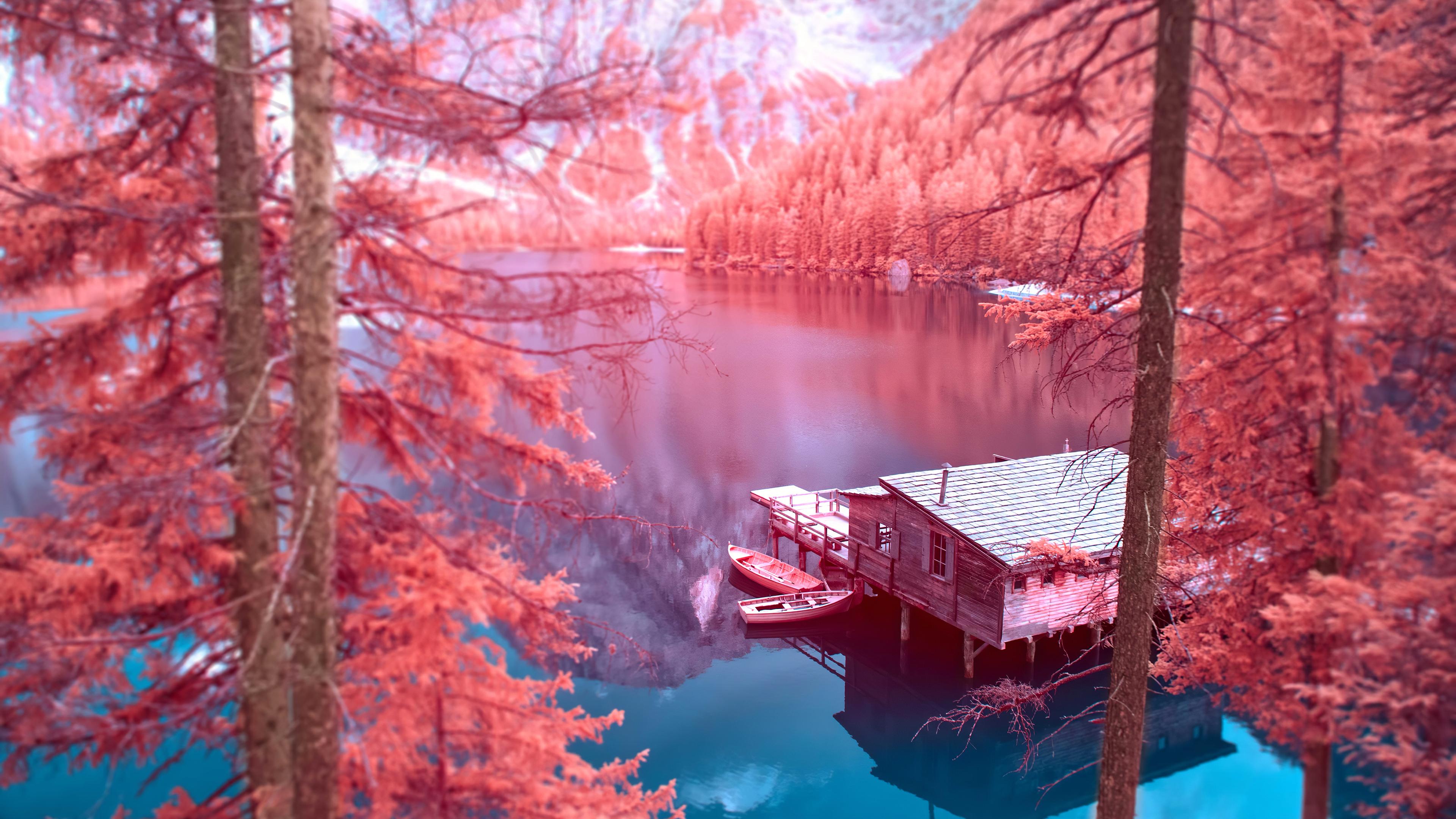 autumn nature 4k hd artist 4k