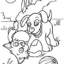 dog coloring pages dog and cat with ball