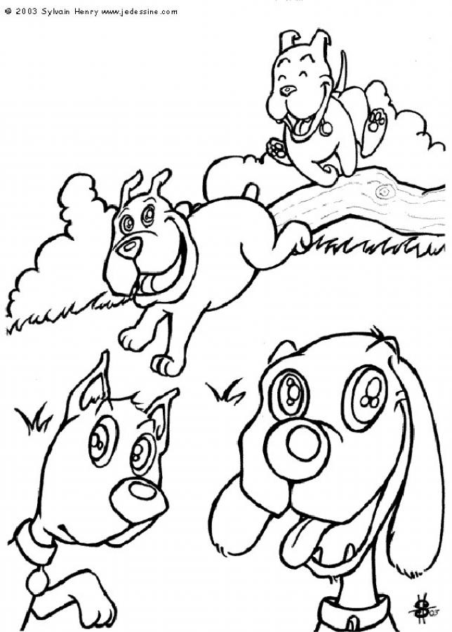 dog coloring pages dog and cat