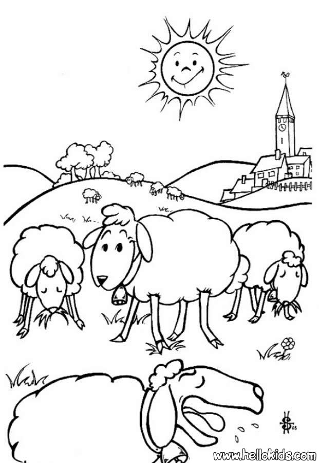farm animal coloring pages sheep
