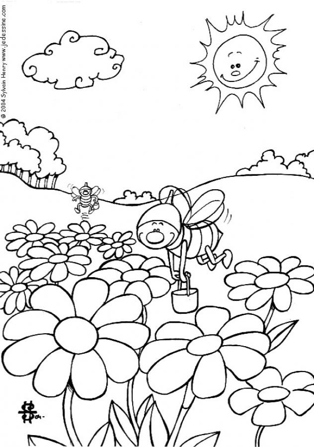 Coloring Pictures Of Bees Funny Page Bee To Color In Rhalumermxtl: Coloring Pages Bees Flowers At Baymontmadison.com