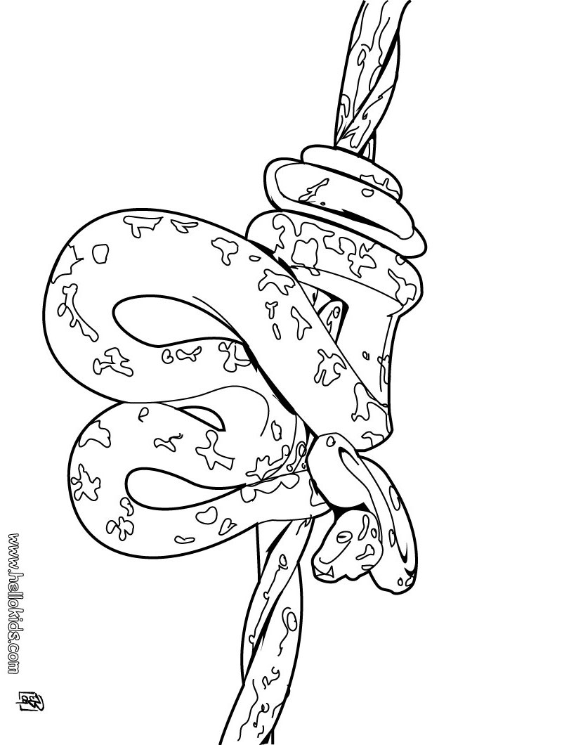 snake coloring pages snake