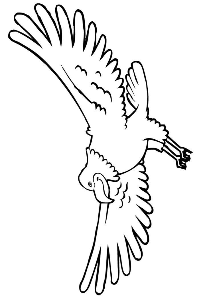 4th of july coloring pages bald eagle
