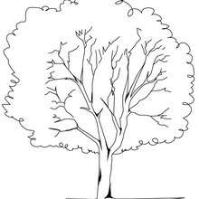 nature coloring pages 116 free online coloring books
