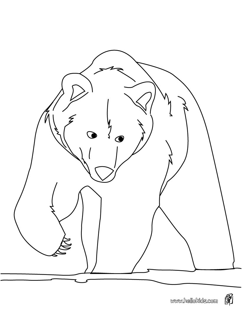forest animals coloring pages brown bear