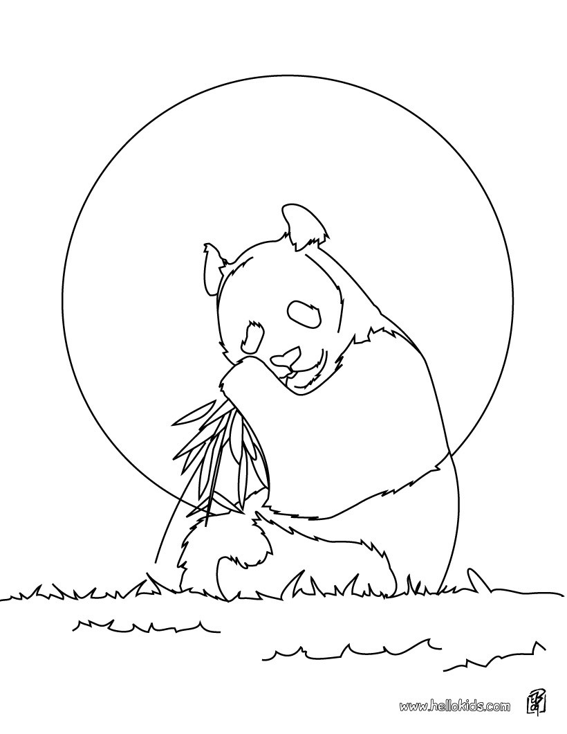 asian animals coloring pages giant panda