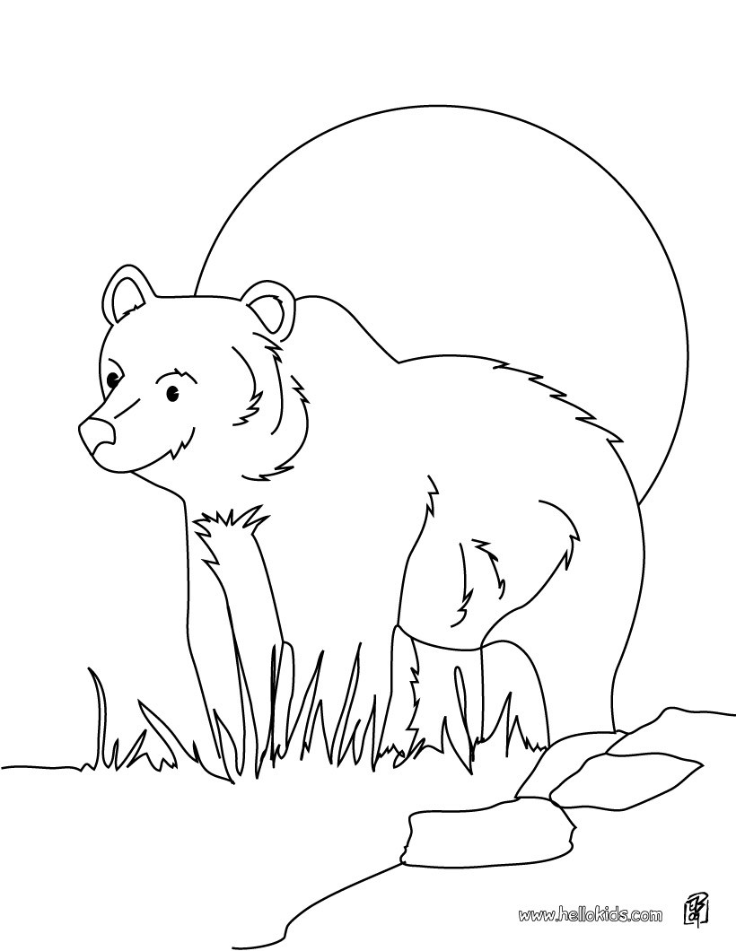 forest animals coloring pages american black bear