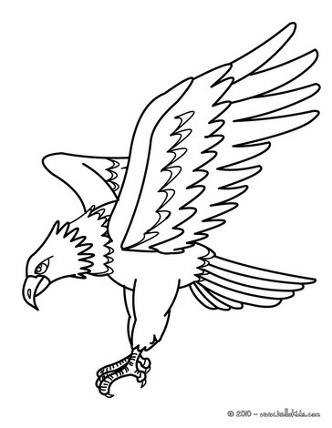 bird coloring pages eagle picture