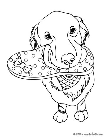 dog coloring pages labrador