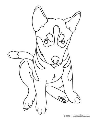 dog coloring pages german shepherd puppy