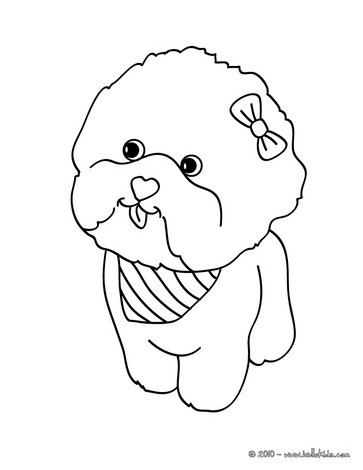 dog coloring pages maltese dog puppy