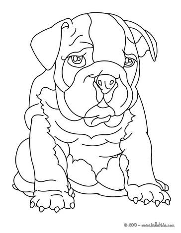 dog coloring pages bulldog