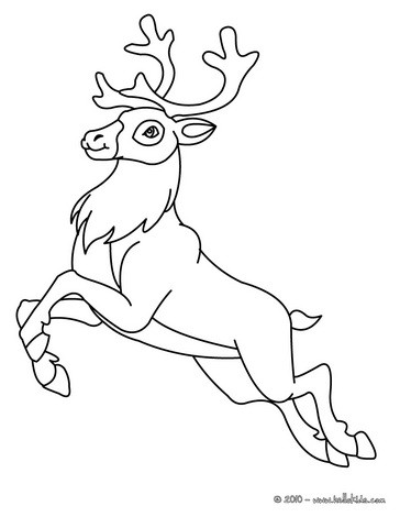forest animals coloring pages reindeer