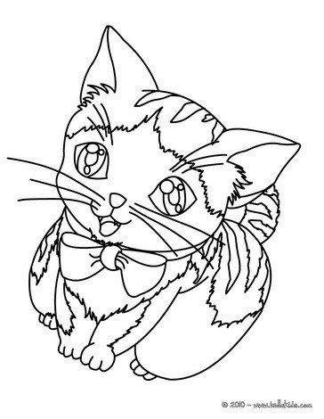 cat coloring pages kitten