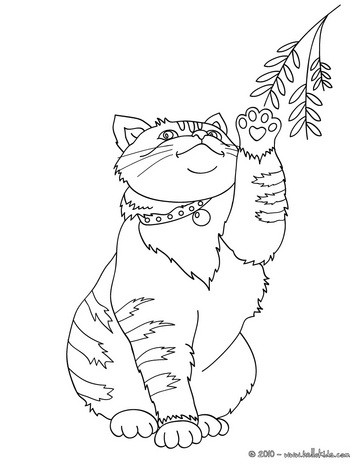 cat coloring pages 45 free pets and animals coloring pages