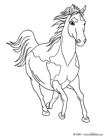 horse coloring pages # 15
