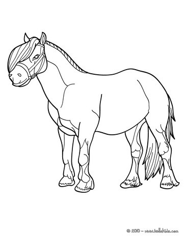 pony coloring pages pony
