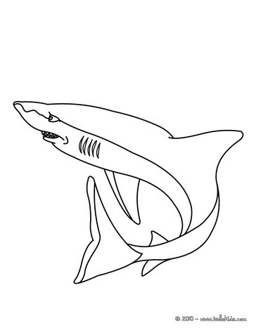 shark coloring pages aggressive shark