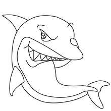 shark coloring pages great white shark