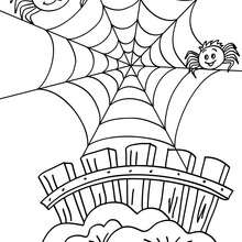 spider coloring pages 14 printables to color online for halloween
