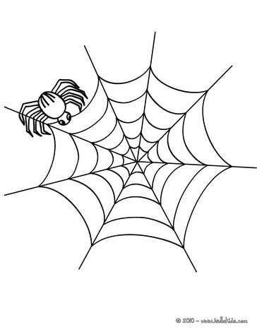 spider coloring pages spider on its web