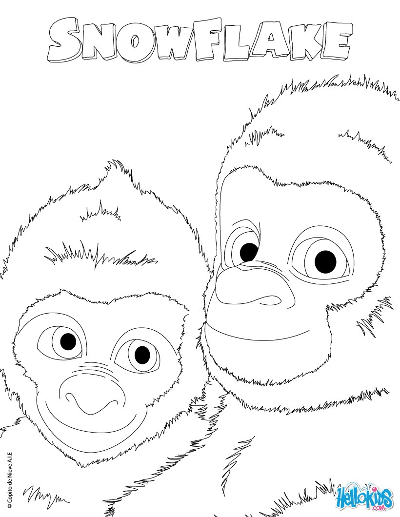 snowflake the white gorilla coloring pages snowflake the
