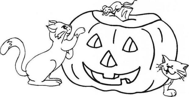 jack o lantern pumpkins coloring pages enlightened pumpkin and cats