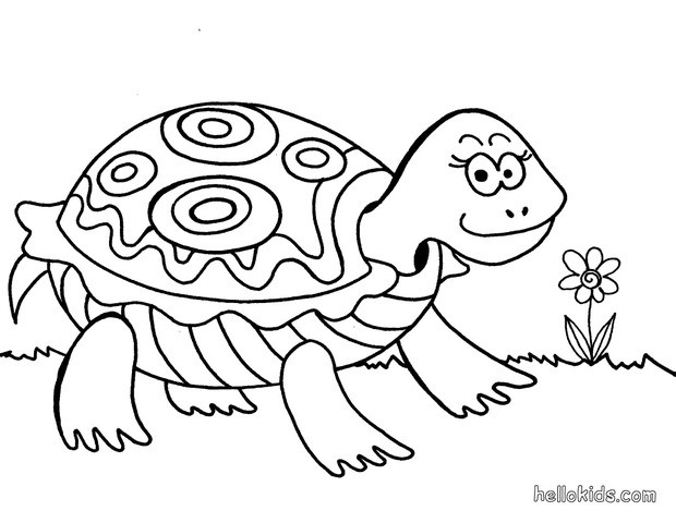 turtle coloring pages turtle