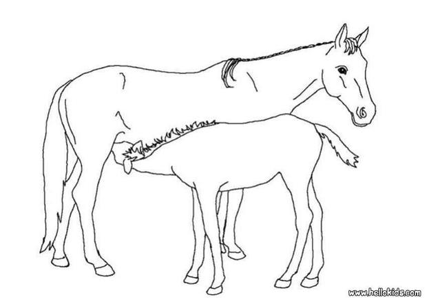 alfa img showing gt mom and baby horse coloring pages