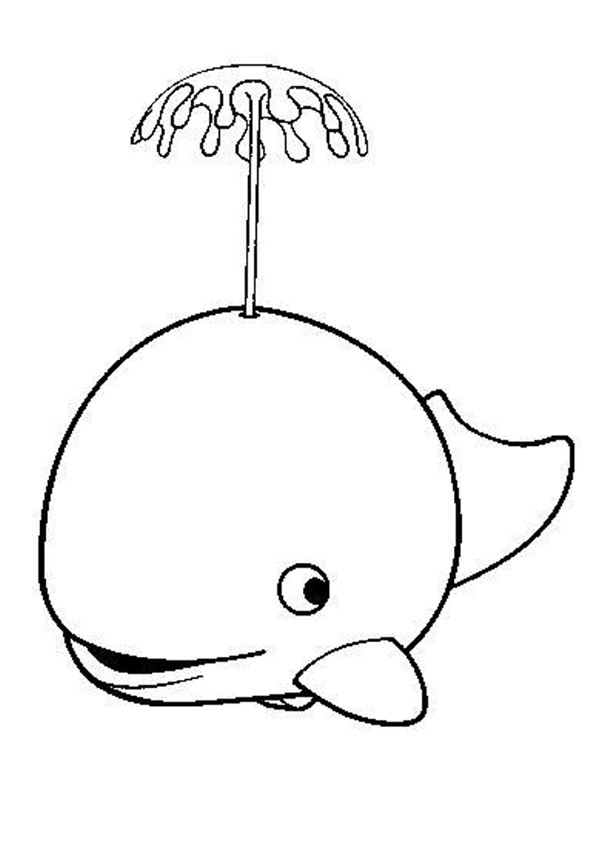 whale coloring pages cute whale