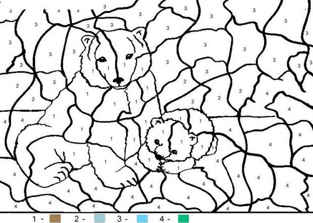 pics photos color by numbers animal coloring pages for kids part i
