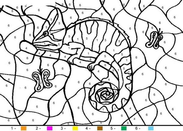 animal color by number coloring pages chameleon