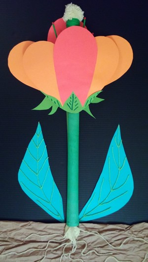 Science: flower anatomy 3d project stories to read