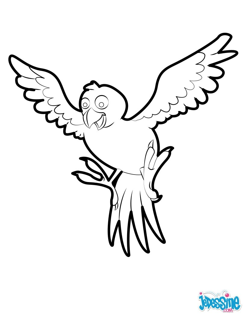 Bird Coloring Pages 90 Free Birds Coloring Pages Birds