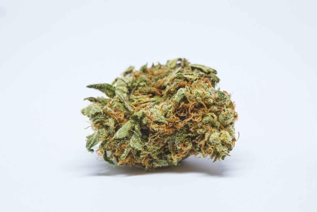 Chernobyl Weed; Chernobyl Cannabis Strain; Chernobyl Hybrid Marijuana Strain