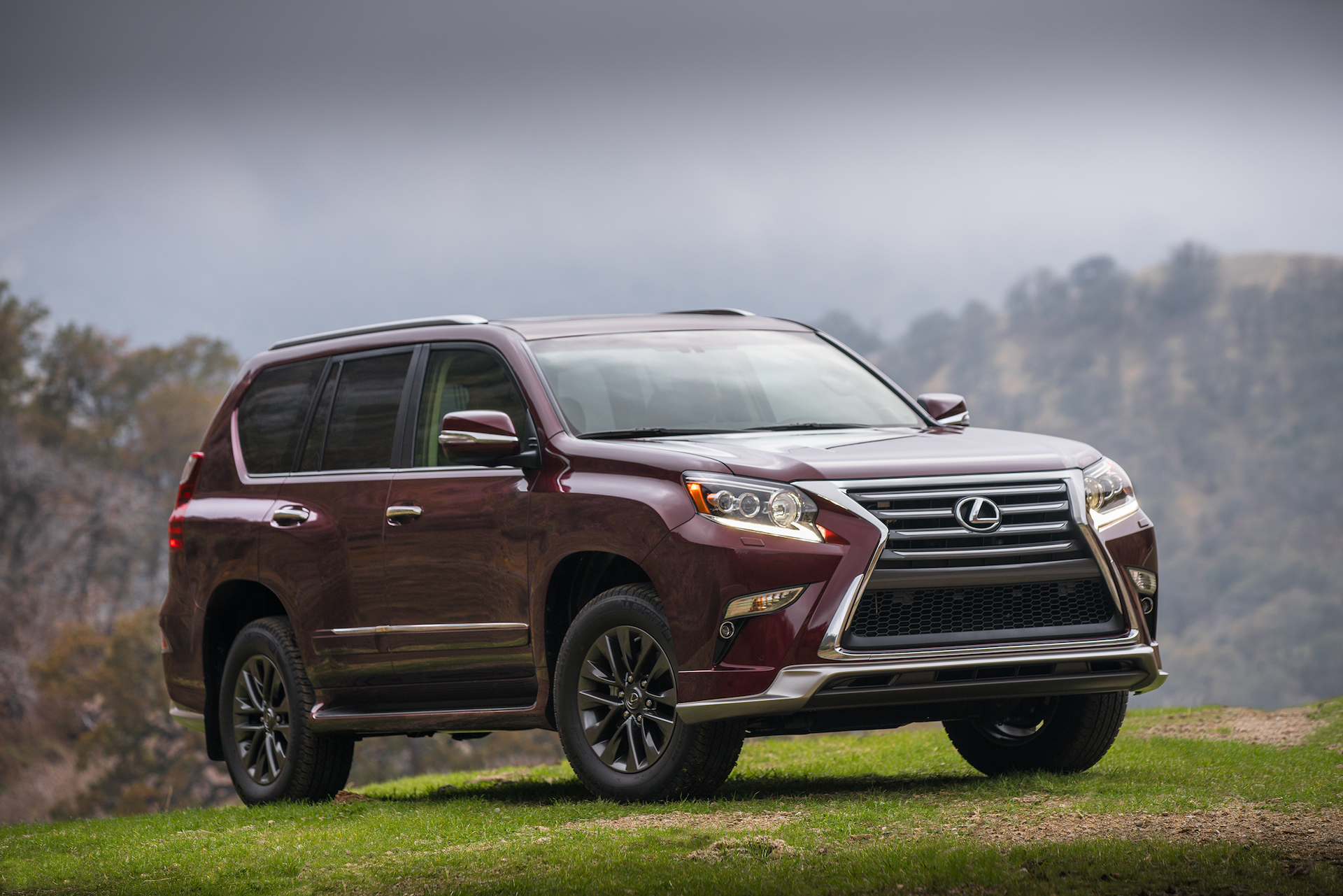 New and Used Lexus GX Prices s Reviews Specs The Car