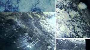 The untimely discovery of extreme life beneath Antarctica 's ice shelves raises a number of questions  Amannan Hindustan