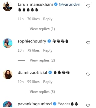 Comments on the video(Instagram/ varundvn)