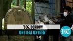 How High Court slammed Centre on Delhi hospitals' Oxygen SOS, The 5 Key Observations