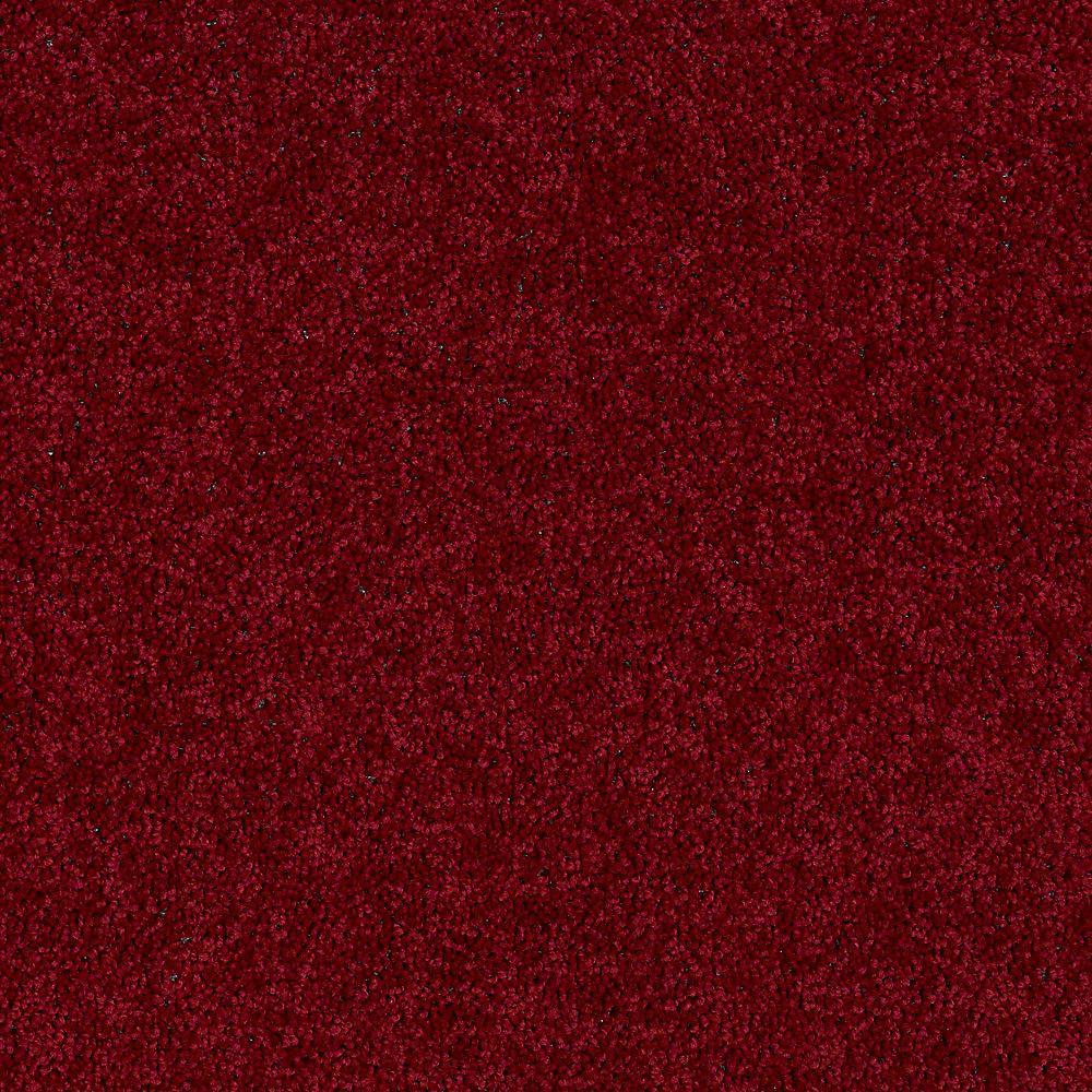 Trafficmaster Alpine Color Romance Texture 15 Ft Carpet