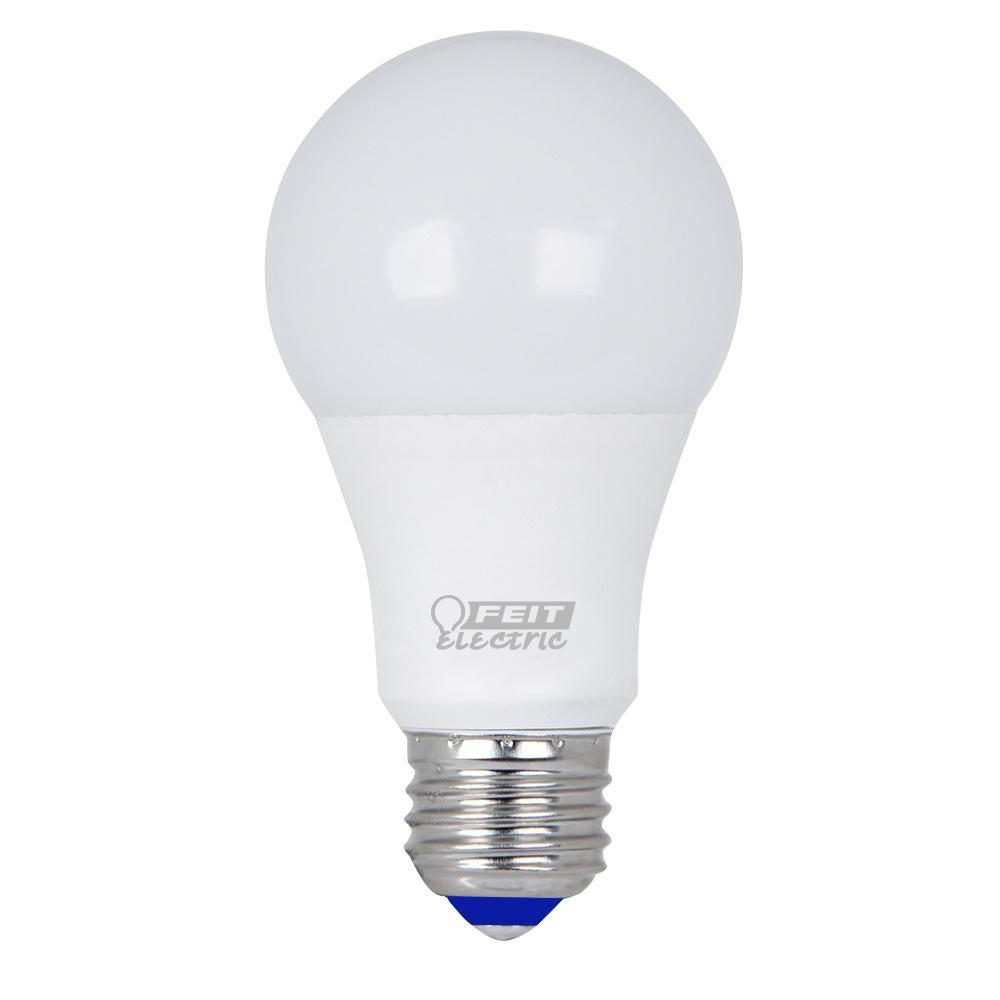 Cold Light Bulb