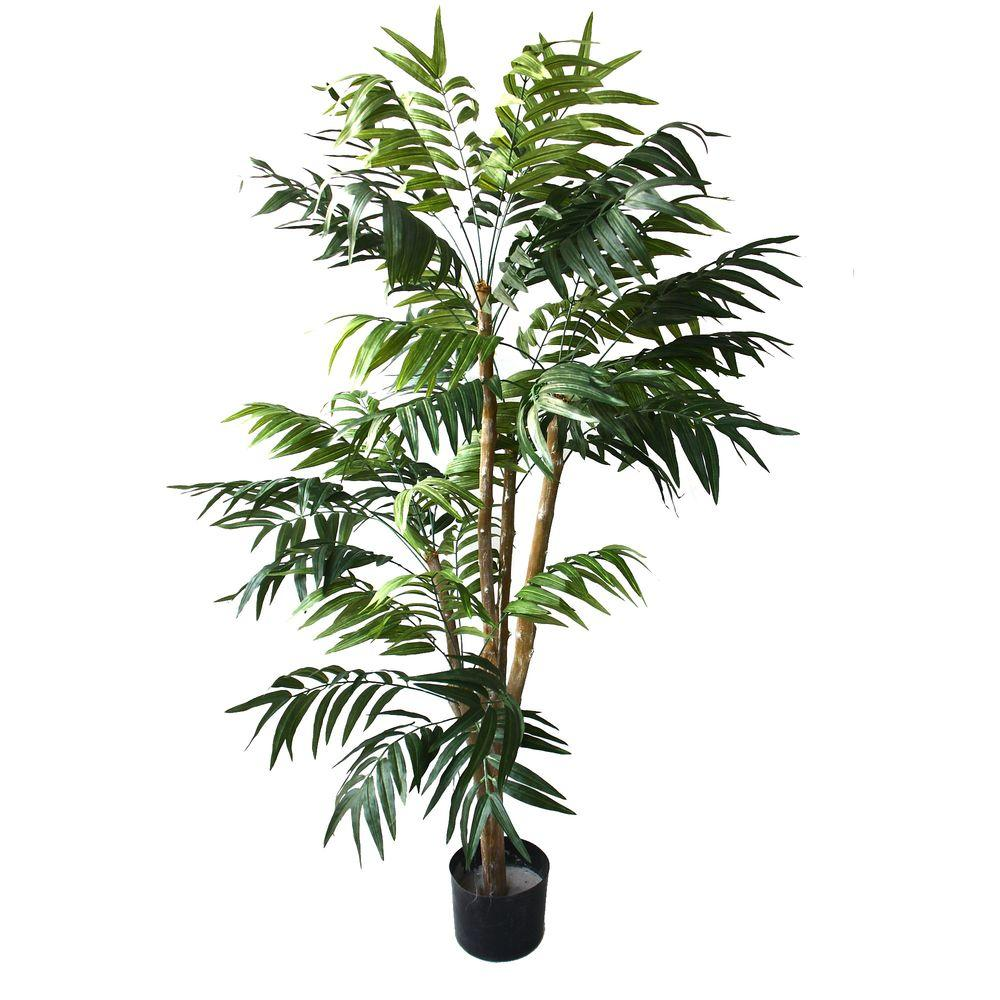 Romano 5 Ft Tropical Palm Tree 50 10004 R The Home Depot