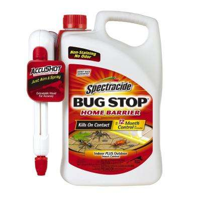 How To Kill Roaches Photo